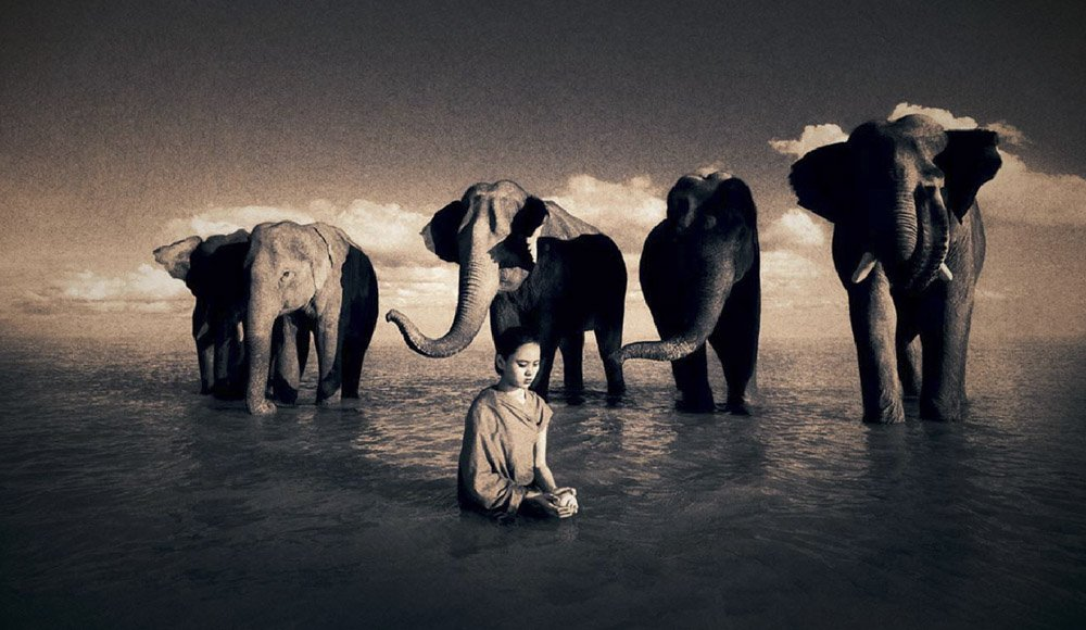 Gregory-Colbert_TFM_0099