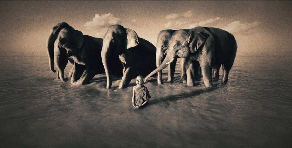 Gregory-Colbert_TFM_0100