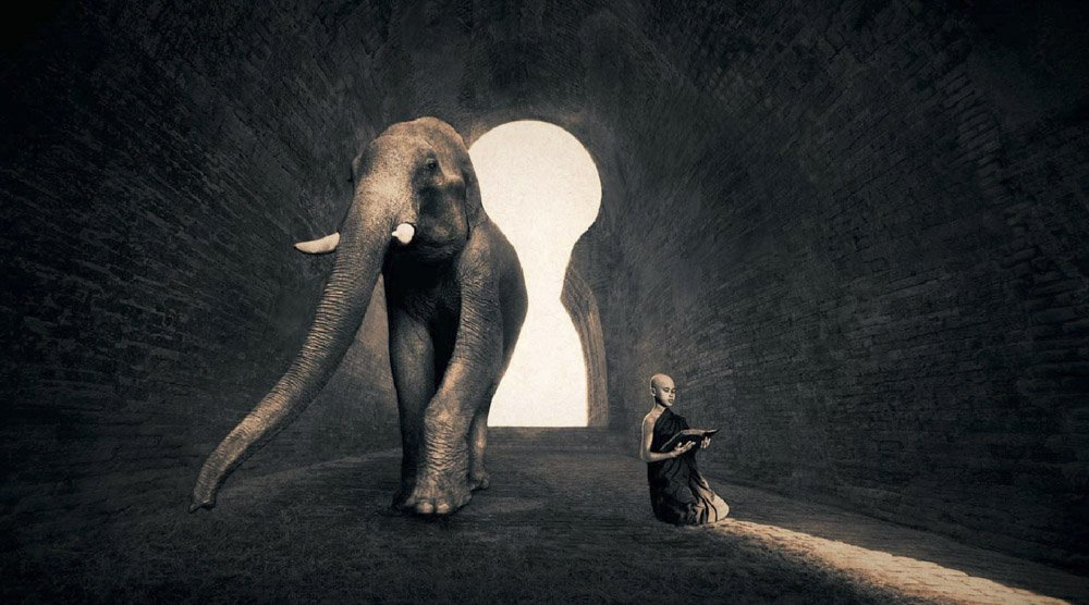 Gregory-Colbert_TFM_0101