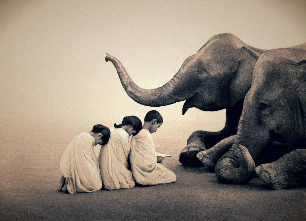 Gregory-Colbert_TFM_0104