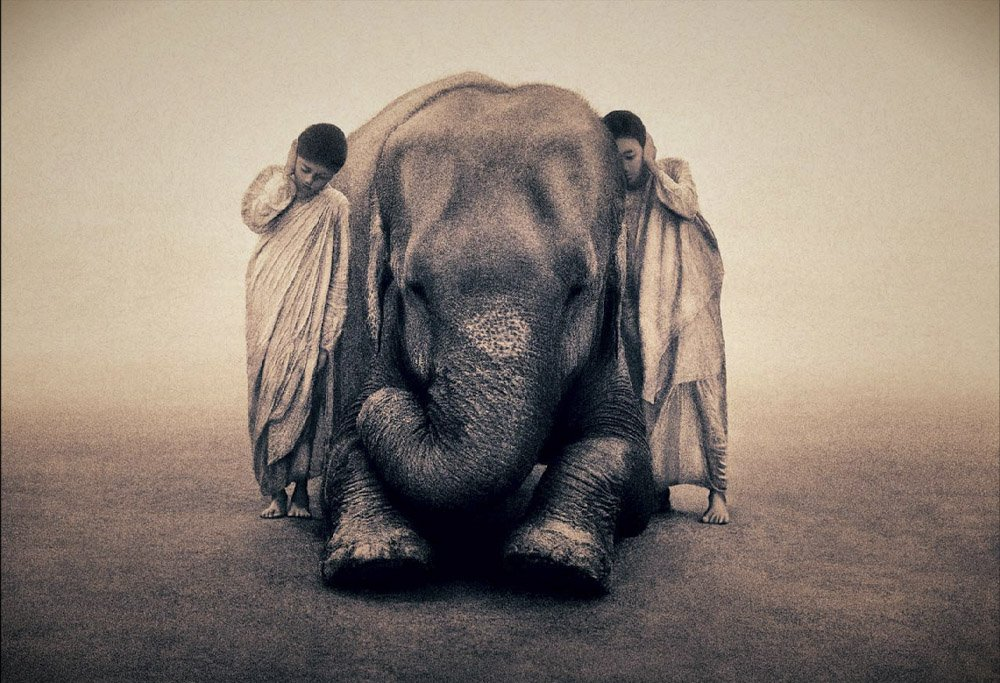 Gregory-Colbert_TFM_0105