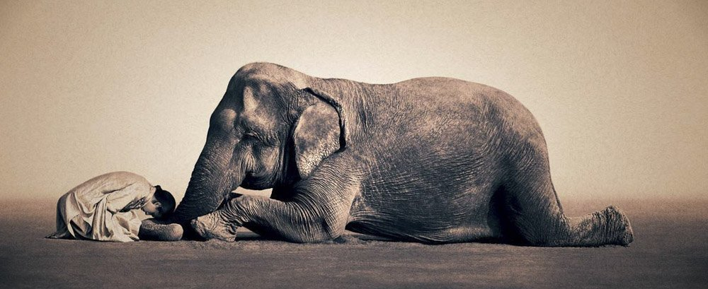 Gregory-Colbert_TFM_0107