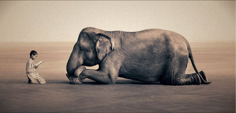 Gregory-Colbert_TFM_0109