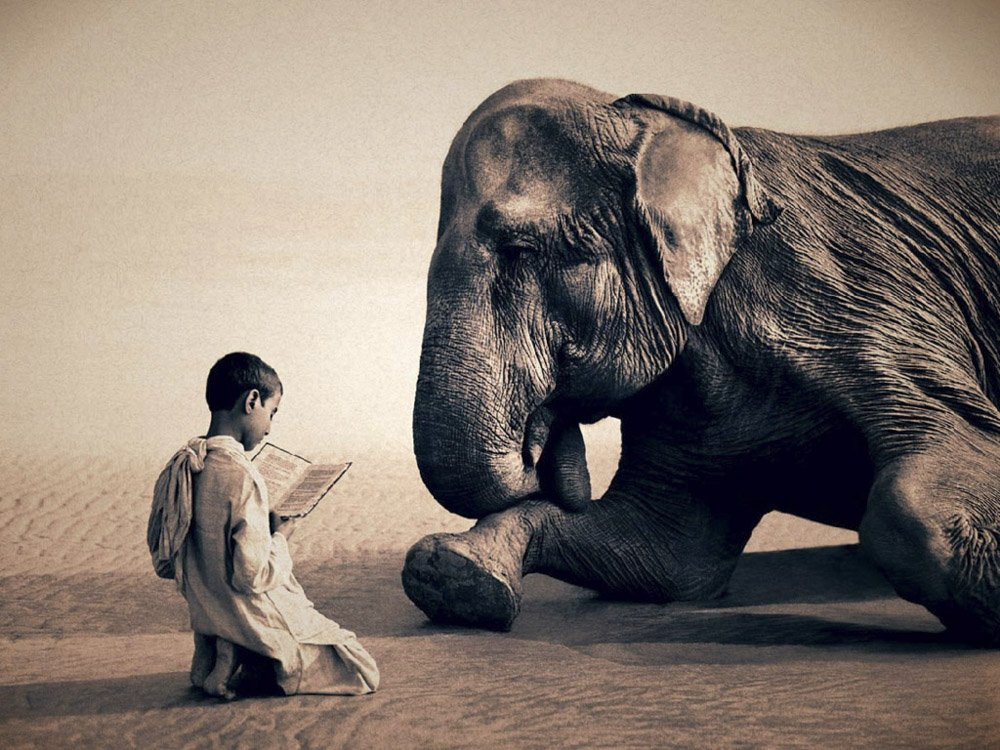 Gregory-Colbert_TFM_0111