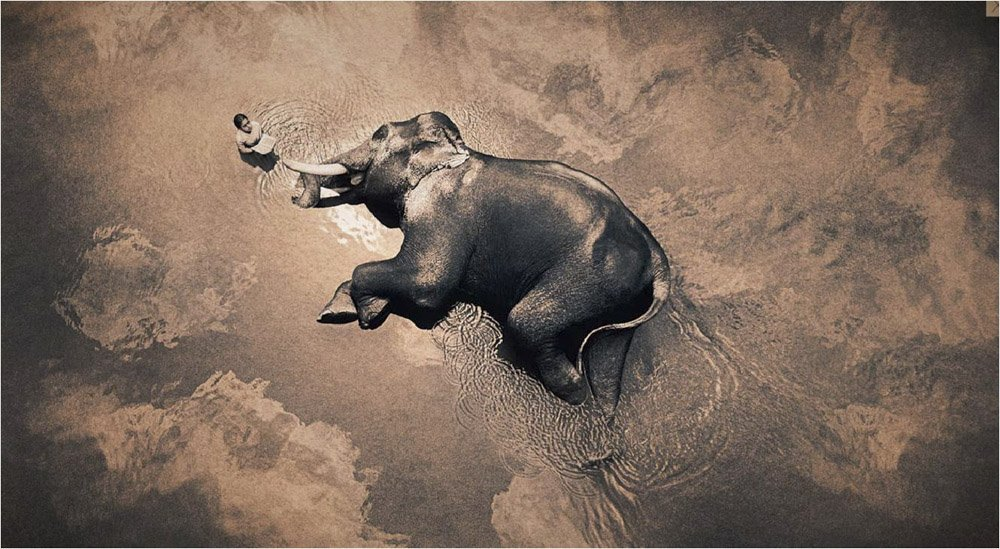 Gregory-Colbert_TFM_0114