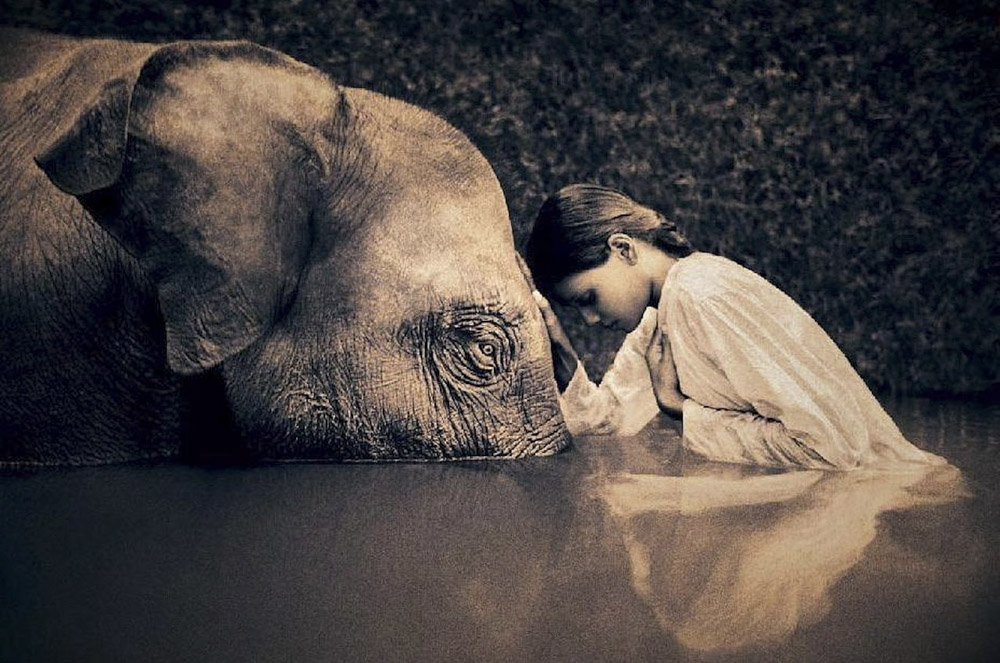 Gregory-Colbert_TFM_0120