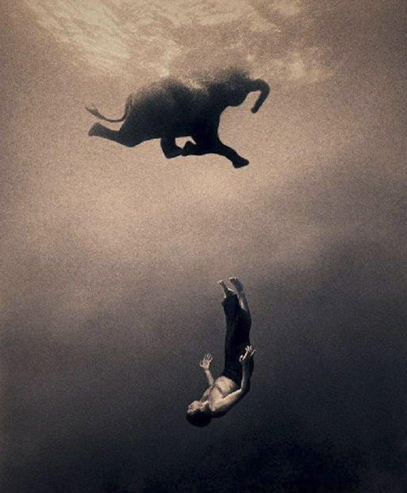 Gregory-Colbert_TFM_0139