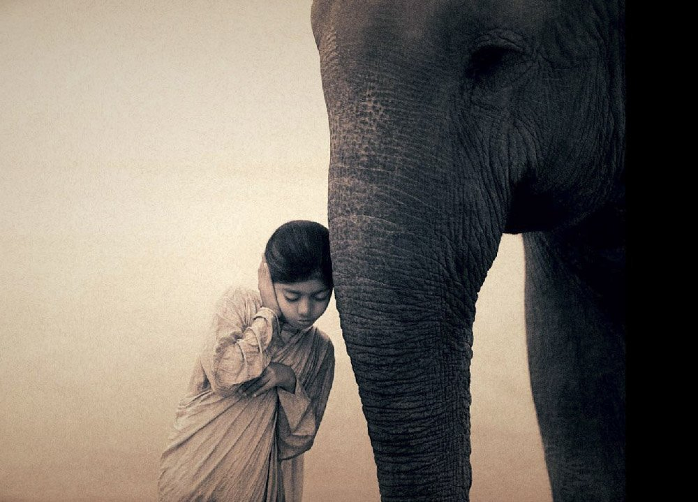 Gregory-Colbert_TFM_0103