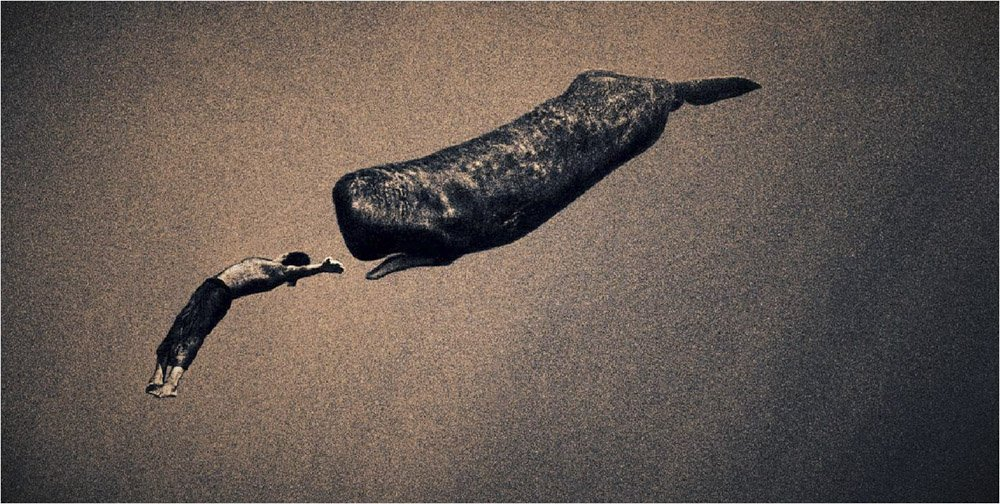 Gregory-Colbert_TFM_0131