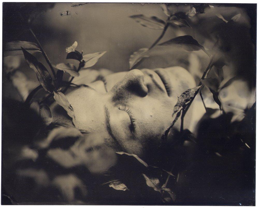 Hannah-Vander-Molen_The-Forest_0020