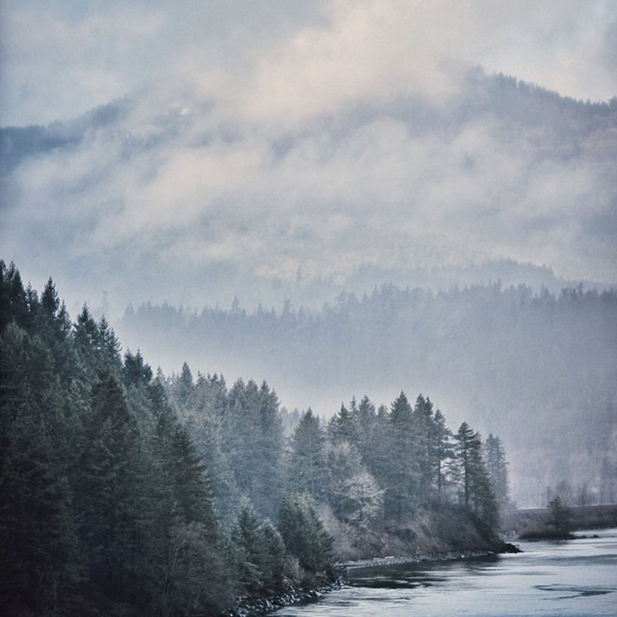 The-Forest-Magazine_Morgan-Grether_0051